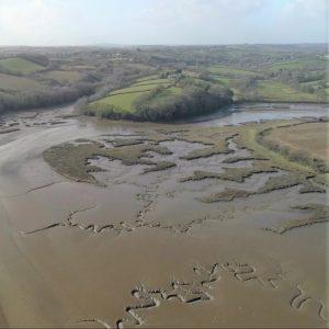 Mudflats on the Tamar - c. Natural England