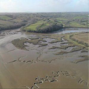 Mudflats on the Tamar - c. Natural England